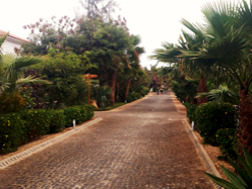 walkway-beachthumb